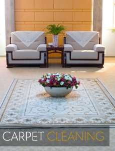 Sterling Cleaning - Carpet Cleaning